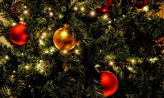 celebration-christmas-christmas-balls-364668-o57aqmcqbz2928hs766fk3c6yixt5wbeoshw2gfur4